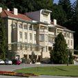 Hotel Dům Bedřicha Smetany**** - Luhačovice - A Foto hotela do Header